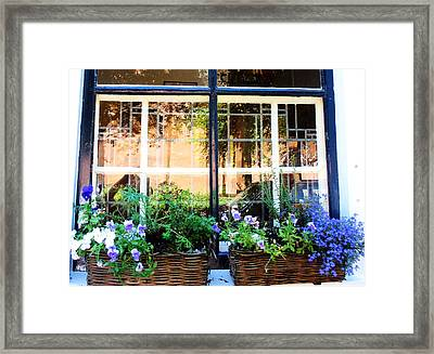 Delt Blue Windows Framed Print