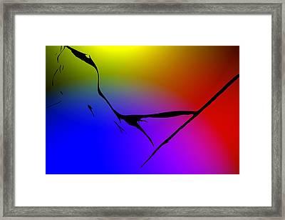 Delta Color Framed Print by Steve K