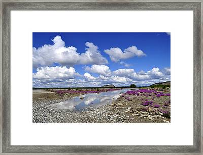 Framed Print featuring the photograph Delta Junction Summer by Cathy Mahnke