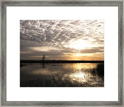 Delta Morning Framed Print by Juan Romagosa