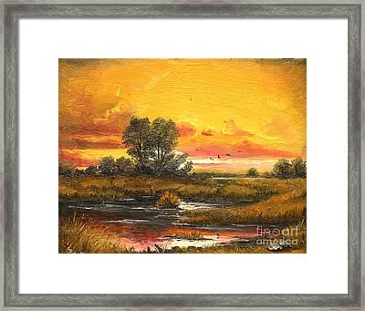 Delta Sunset Framed Print by Sorin Apostolescu
