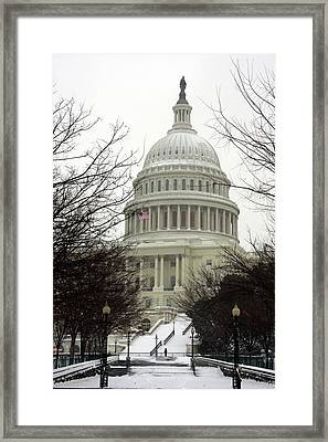 Democracy Of One Framed Print