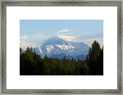Denali A Closer Look Framed Print by Tara Lynn