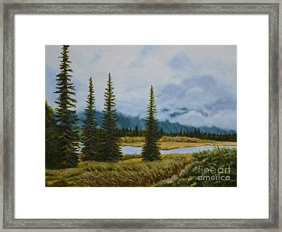Denali Morning Framed Print