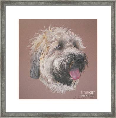 Dennis - Wheaten Terrier Framed Print by Joanne Simpson