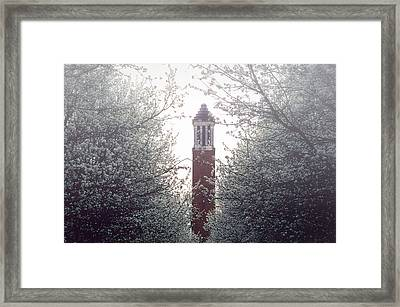 Denny Chimes Foggy Blossoms Framed Print by Ben Shields