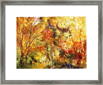 Dense Wood Framed Print