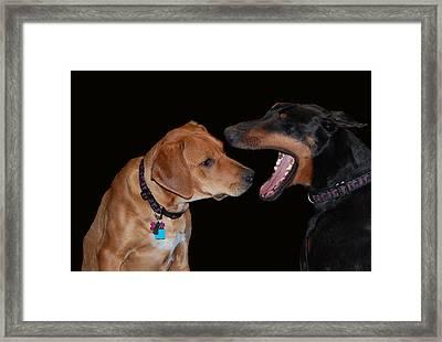 Dentist Framed Print by Mim White