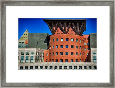 Denver Library Rooftops Framed Print