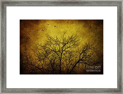 Departed Framed Print