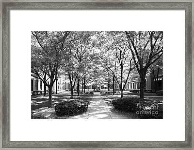 Depaul University Richardson Library Courtyard Framed Print by University Icons