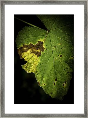Depleted Framed Print by Bryan Hildebrandt