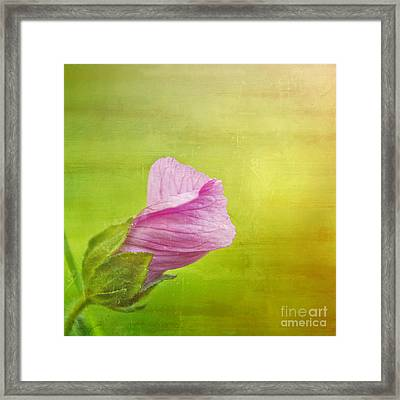 Deploiement - 03bt01a Framed Print by Variance Collections