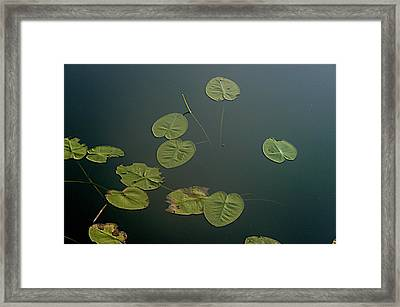Depth Framed Print by Joseph Yarbrough