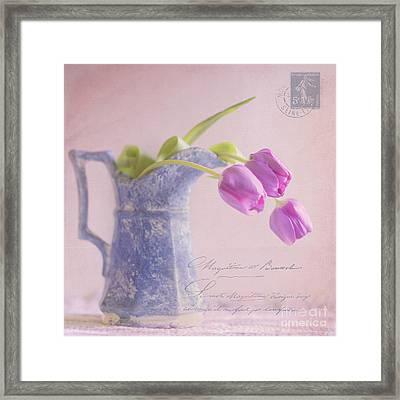 Des Tulipe Framed Print by Betty LaRue