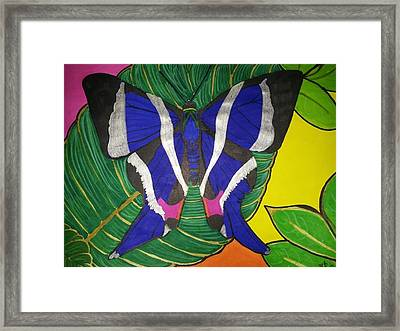 Descansando Framed Print by Marcia Brownridge