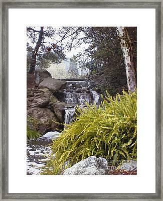 Descanso Gardens 1 Framed Print