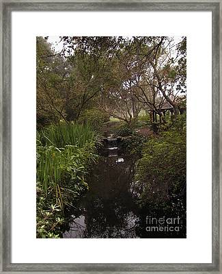 Descanso Gardens 2 Framed Print