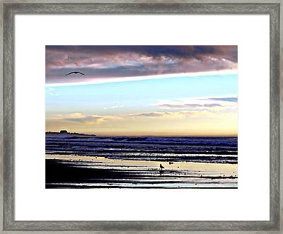 Descendants As Many As The Sand On The Shore Of The Sea Framed Print by Sharon Soberon