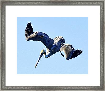 Descent Framed Print by AJ  Schibig