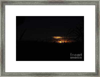 Descent Framed Print by Andres LaBrada