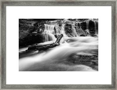 Descent Framed Print by Bill Cantey
