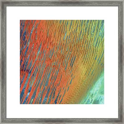 Desert Abstract Framed Print by Jennifer Rondinelli Reilly - Fine Art Photography