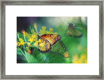Desert Autumn Frenzy Framed Print