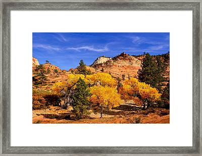 Framed Print featuring the photograph Desert Autumn by Greg Norrell