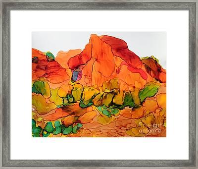 Desert Beauty 6 Framed Print