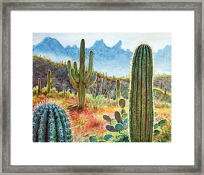 Desert Beauty Framed Print by Frank Robert Dixon