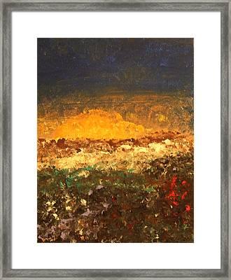 Desert Bloom Framed Print