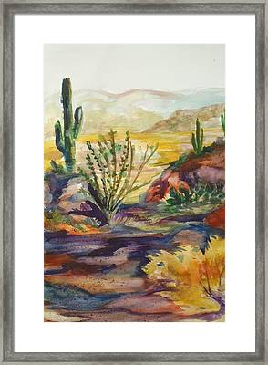 Desert Color Framed Print