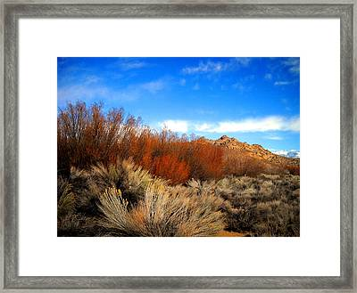 Framed Print featuring the photograph Desert Colors by Marilyn Diaz