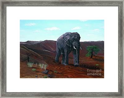 Desert Elephant Framed Print
