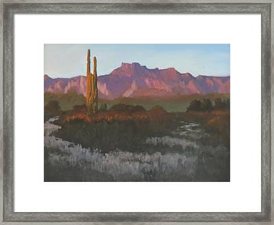 Desert Sunset Glow Framed Print