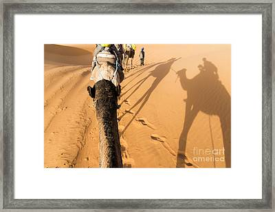 Desert Excursion Framed Print