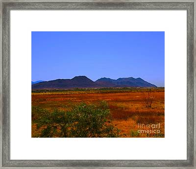 Desert Field Framed Print by Rebecca Christine Cardenas