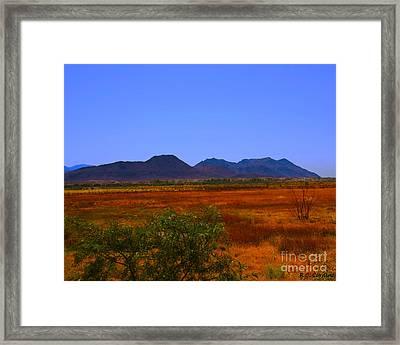 Desert Field Framed Print by Rebecca Christine Cardenas