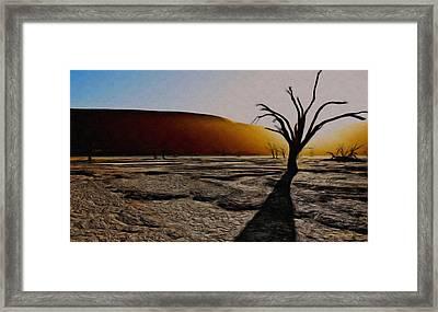 Desert Floor Framed Print by Wayne Bonney