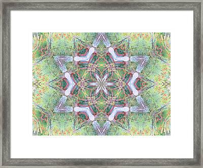 Desert Flower Mandala Framed Print