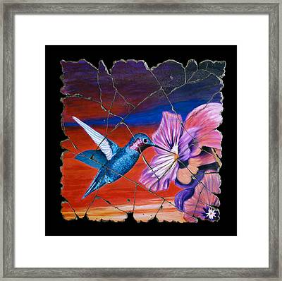 Desert Hummingbird Framed Print by Steve Bogdanoff