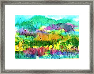 Desert In The Spring Framed Print