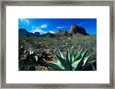 Desert Landscape Framed Print by Panoramic Images