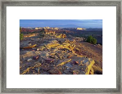 Desert Landscape, San Rafael Reef, Utah Framed Print by Timothy Herpel