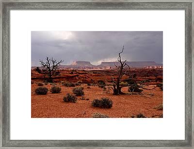 Desert Light  Framed Print