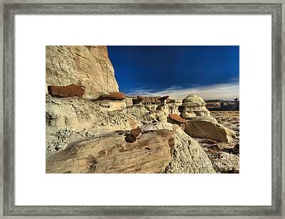 Desert Litter Framed Print by Adam Jewell
