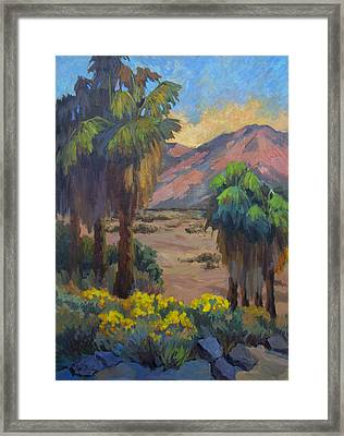 Desert Marigolds At Andreas Canyon Framed Print by Diane McClary