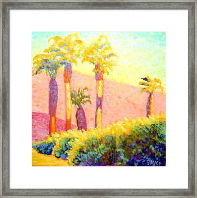Desert Morning Palms Framed Print by Craig  Bruce