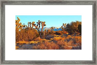 Desert Mountain Framed Print